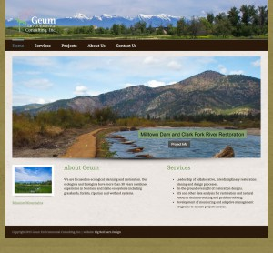 image of website design for geum environmental consulting